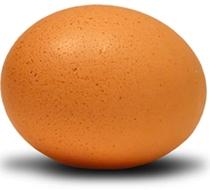 huevod